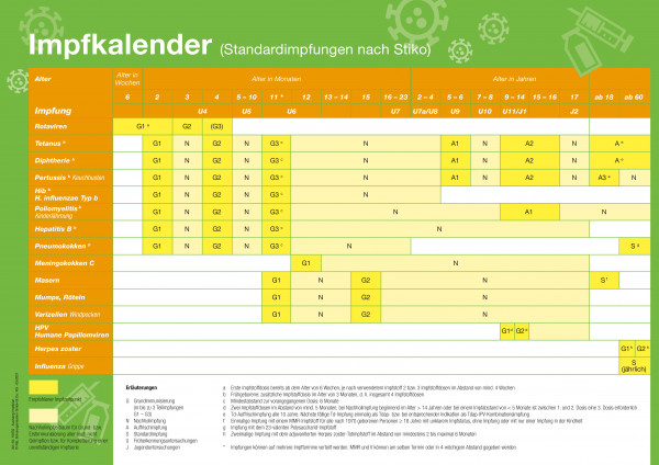 Aushang Impfkalender
